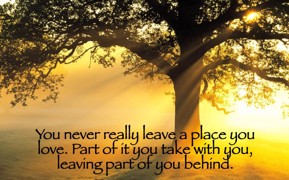 A Place You Love Quote